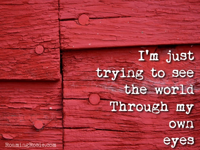 "Skylar Grey ""Wear Me Out"" Quote:  I'm just trying to see te world through my own eyes"