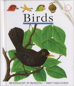 Birds First Discovery Book