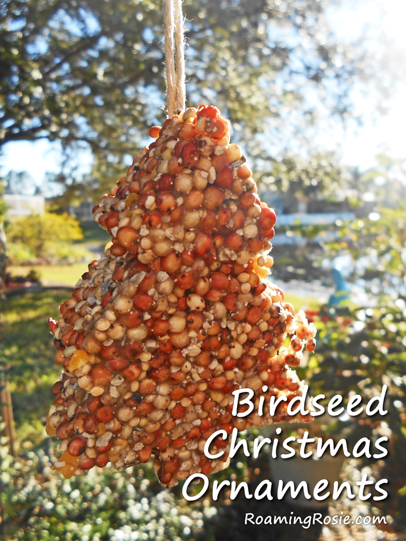 Birdseed Christmas Ornaments 1