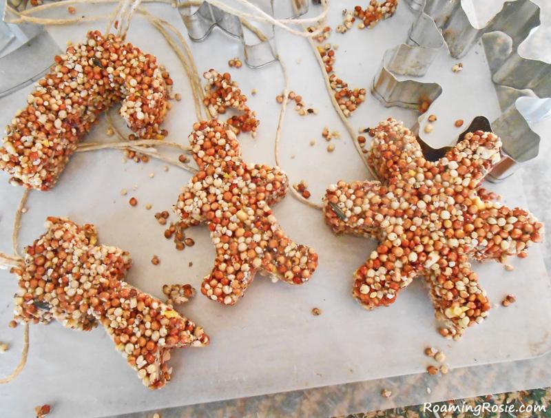 DIY: Ornamentos de la semilla del pájaro - vida del norte 40
