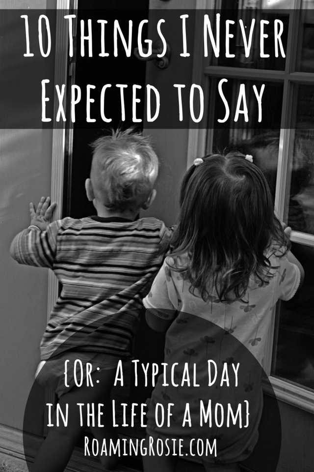 10 Things I Never Expected to Say OR A Typical Day in the Life of a Mom from RoamingRosie.com
